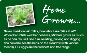 About Willow Tree Farm Shop - Glemsford
